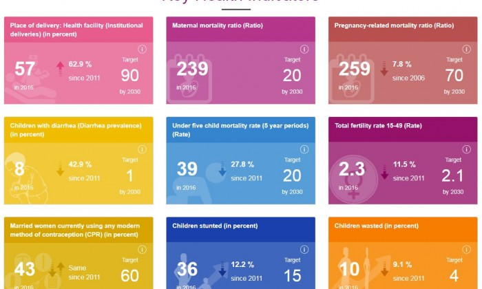 Interactive data dashboards for health in Nepal